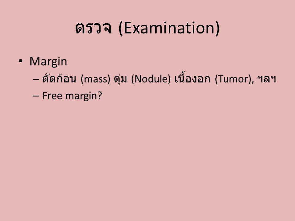 ตรวจ (Examination)