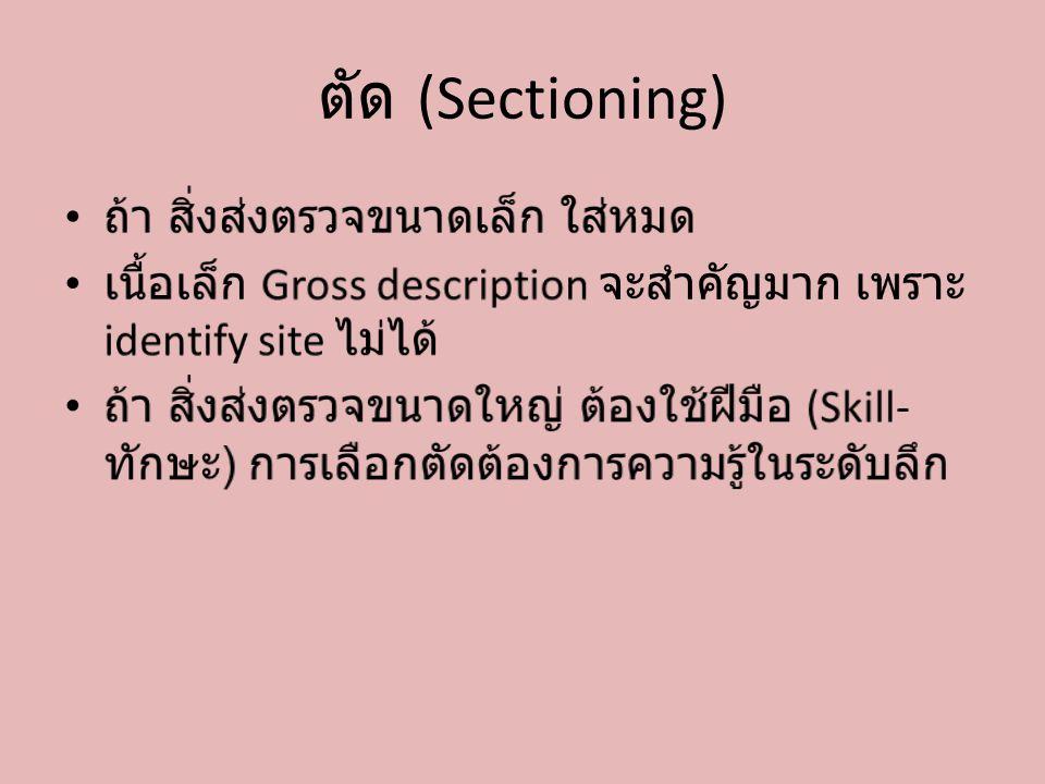 ตัด (Sectioning)