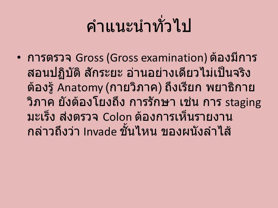 คำแนะนำทั่วไป การตรวจ Gross (Gross examination) ต้องมีการ สอนปฏิบัติ สักระยะ อ่านอย่างเดียวไม่เป็นจริง ต้องรู้ Anatomy ( กายวิภาค ) ถึงเรียก พยาธิกาย