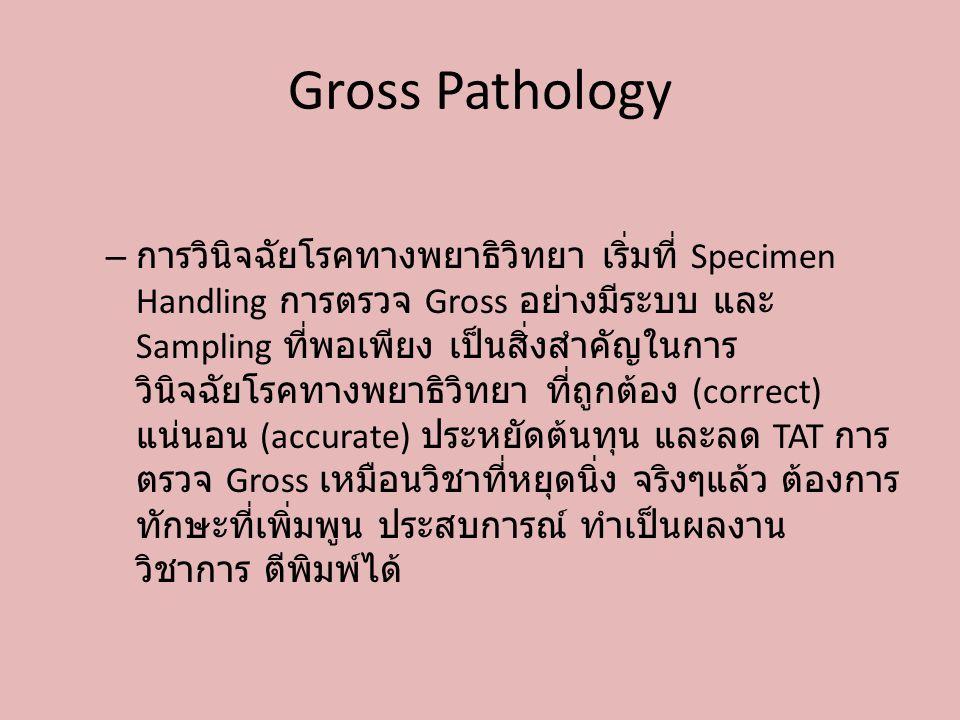 Gross Pathology – การวินิจฉัยโรคทางพยาธิวิทยา เริ่มที่ Specimen Handling การตรวจ Gross อย่างมีระบบ และ Sampling ที่พอเพียง เป็นสิ่งสำคัญในการ วินิจฉัย