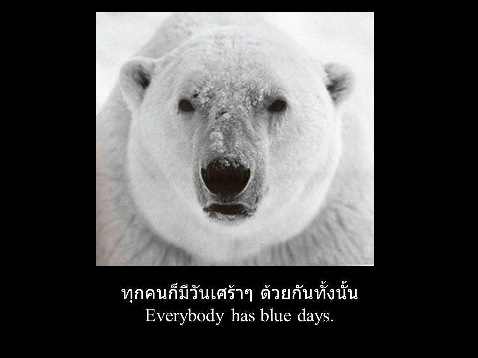 ทุกคนก็มีวันเศร้าๆ ด้วยกันทั้งนั้น Everybody has blue days.