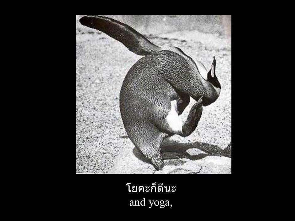 โยคะก็ดีนะ and yoga,