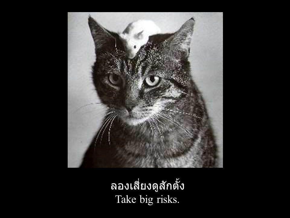 ลองเสี่ยงดูสักตั้ง Take big risks.