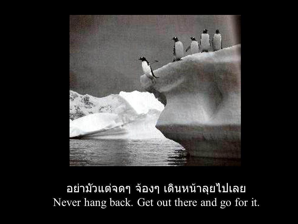อย่ามัวแต่จดๆ จ้องๆ เดินหน้าลุยไปเลย Never hang back. Get out there and go for it.