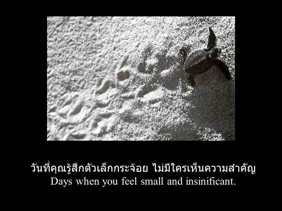 วันที่คุณรู้สึกตัวเล็กกระจ้อย ไม่มีใครเห็นความสำคัญ Days when you feel small and insinificant.