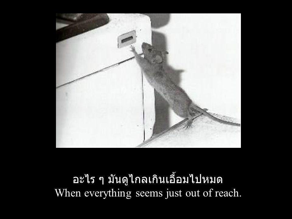 อะไร ๆ มันดูไกลเกินเอื้อมไปหมด When everything seems just out of reach.