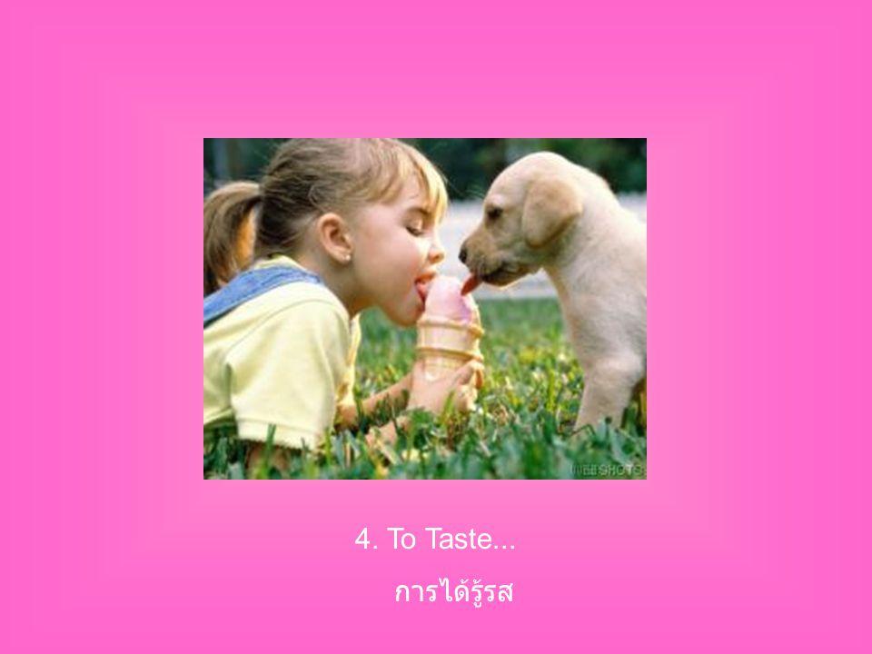 4. To Taste... การได้รู้รส