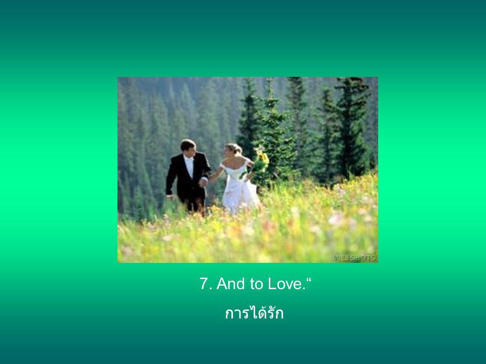 7. And to Love. การได้รัก