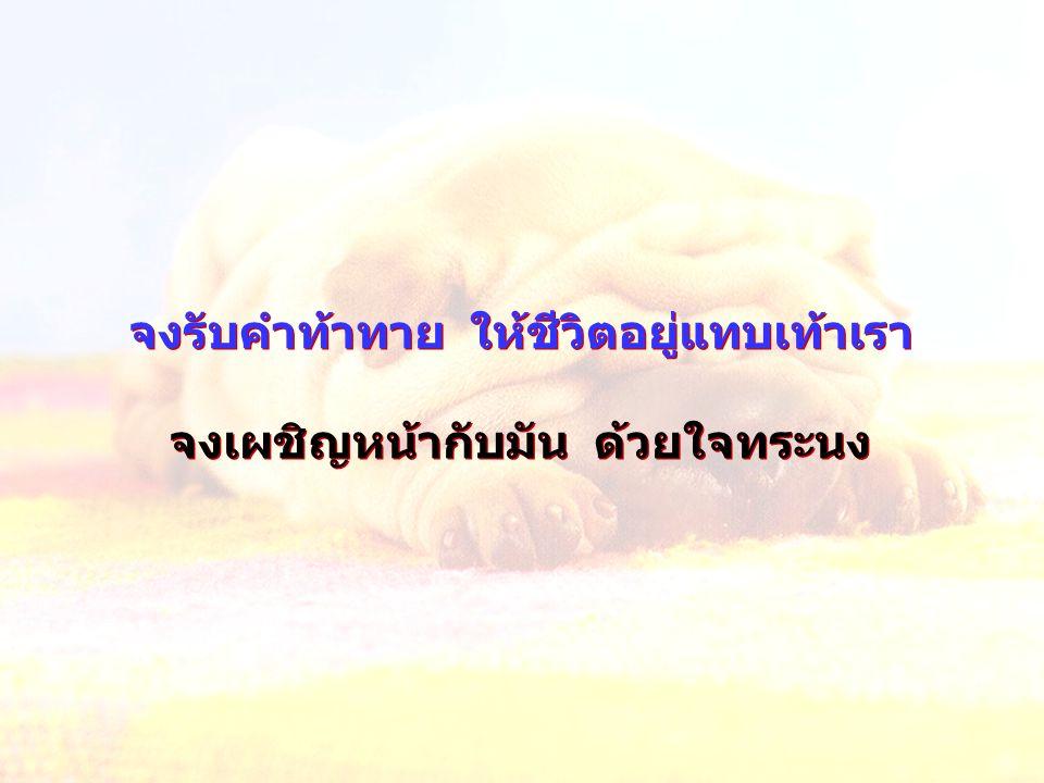 จงดำเนินชีวิตตามที่เรามี ทำให้ดีที่สุด คิดในแง่ดี มีความสุข แล้วให้พระเจ้าทรง ทำต่อที่เหลือ จงดำเนินชีวิตตามที่เรามี ทำให้ดีที่สุด คิดในแง่ดี มีความสุข แล้วให้พระเจ้าทรง ทำต่อที่เหลือ
