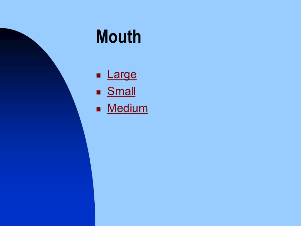 Mouth Large Small Medium