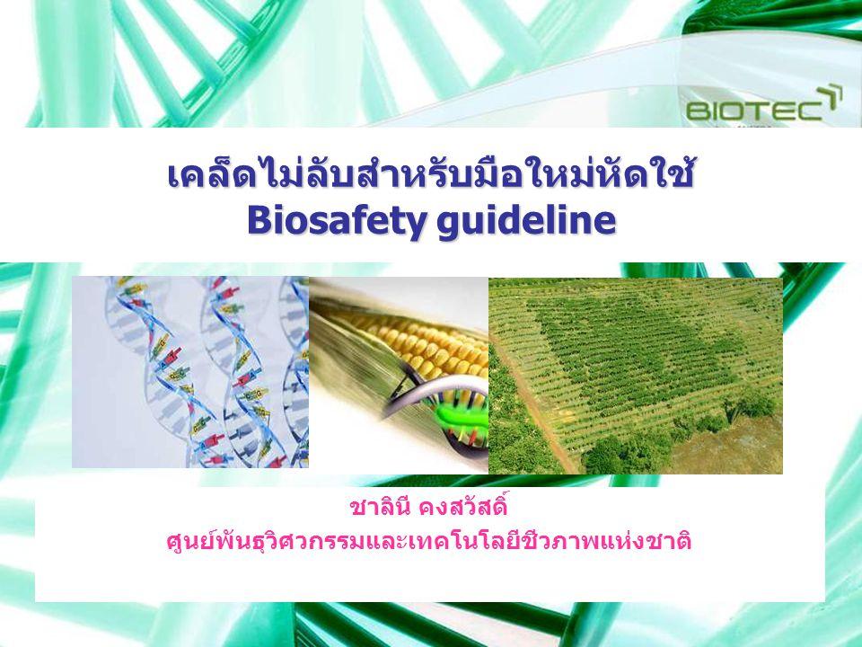 เคล็ดไม่ลับสำหรับมือใหม่หัดใช้ Biosafety guideline ชาลินี คงสวัสดิ์ ศูนย์พันธุวิศวกรรมและเทคโนโลยีชีวภาพแห่งชาติ