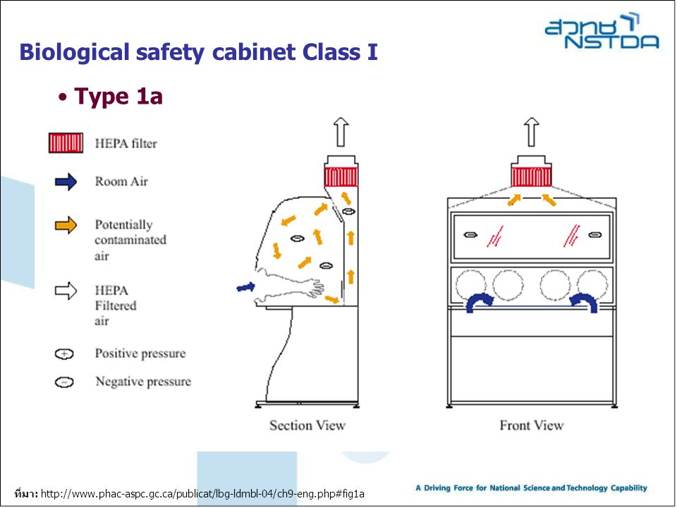 Biological safety cabinet Class I ที่มา: http://www.phac-aspc.gc.ca/publicat/lbg-ldmbl-04/ch9-eng.php#fig1a Type 1a