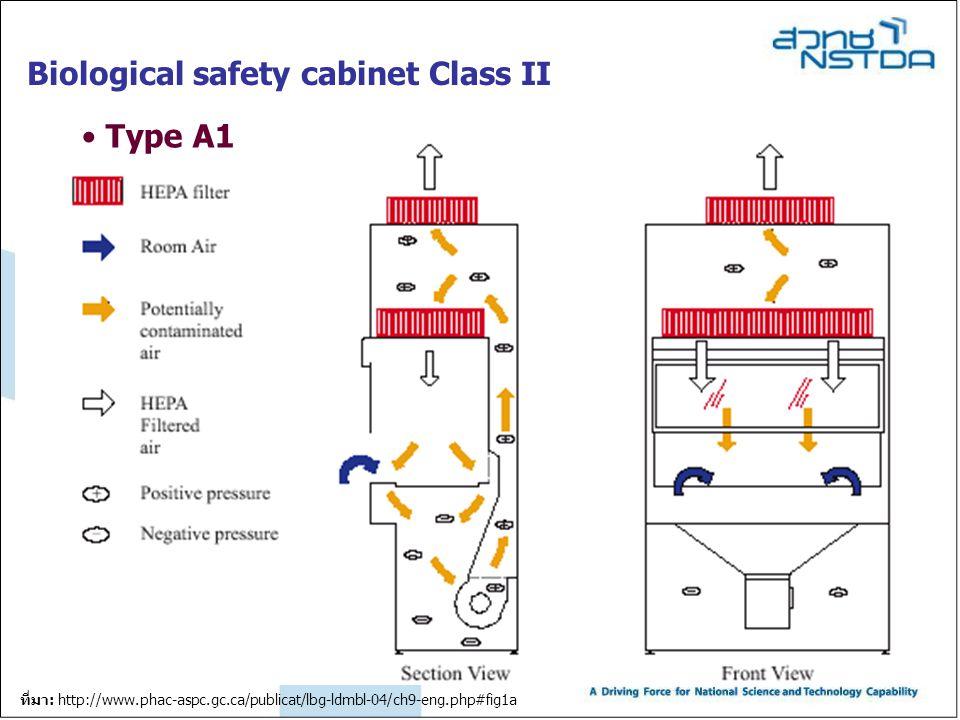 Biological safety cabinet Class II Type A1 ที่มา: http://www.phac-aspc.gc.ca/publicat/lbg-ldmbl-04/ch9-eng.php#fig1a
