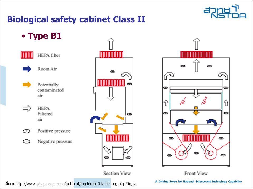 Biological safety cabinet Class II Type B1 ที่มา: http://www.phac-aspc.gc.ca/publicat/lbg-ldmbl-04/ch9-eng.php#fig1a