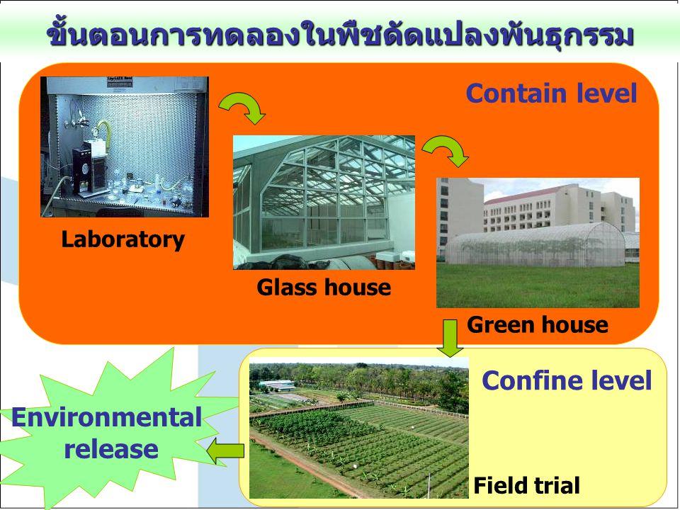 Environmental release Confine level ขั้นตอนการทดลองในพืชดัดแปลงพันธุกรรม Contain level Laboratory Glass house Green house Field trial