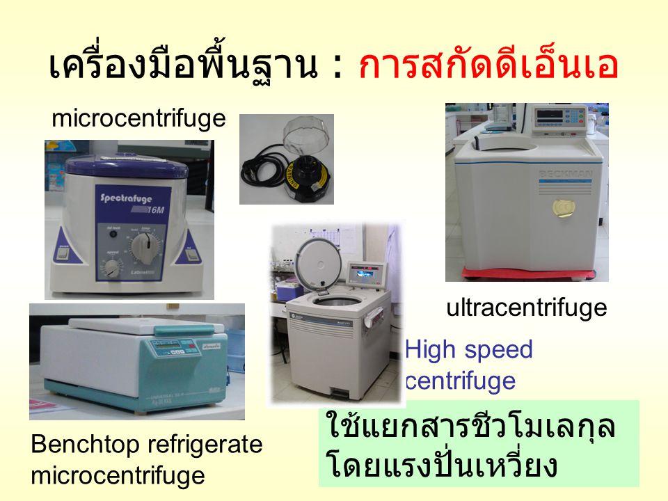 เครื่องมือพื้นฐาน : การสกัดดีเอ็นเอ ultracentrifuge microcentrifuge High speed centrifuge Benchtop refrigerate microcentrifuge ใช้แยกสารชีวโมเลกุล โดย