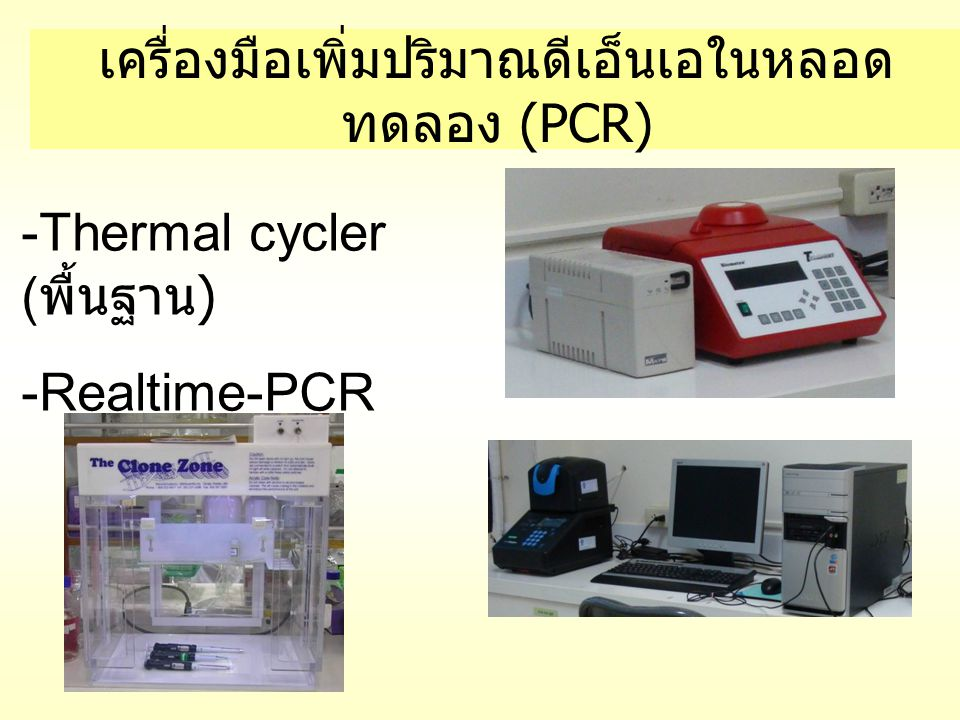 เครื่องมือเพิ่มปริมาณดีเอ็นเอในหลอด ทดลอง (PCR) -Thermal cycler ( พื้นฐาน ) -Realtime-PCR
