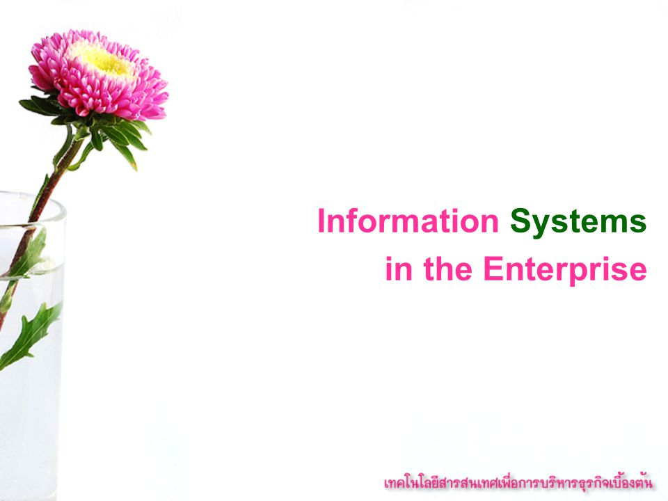 Management information systems (MIS) Information systems at the management level of an organization that serve the functions of planning, controlling, and decision making by providing routine summary and exception reports.