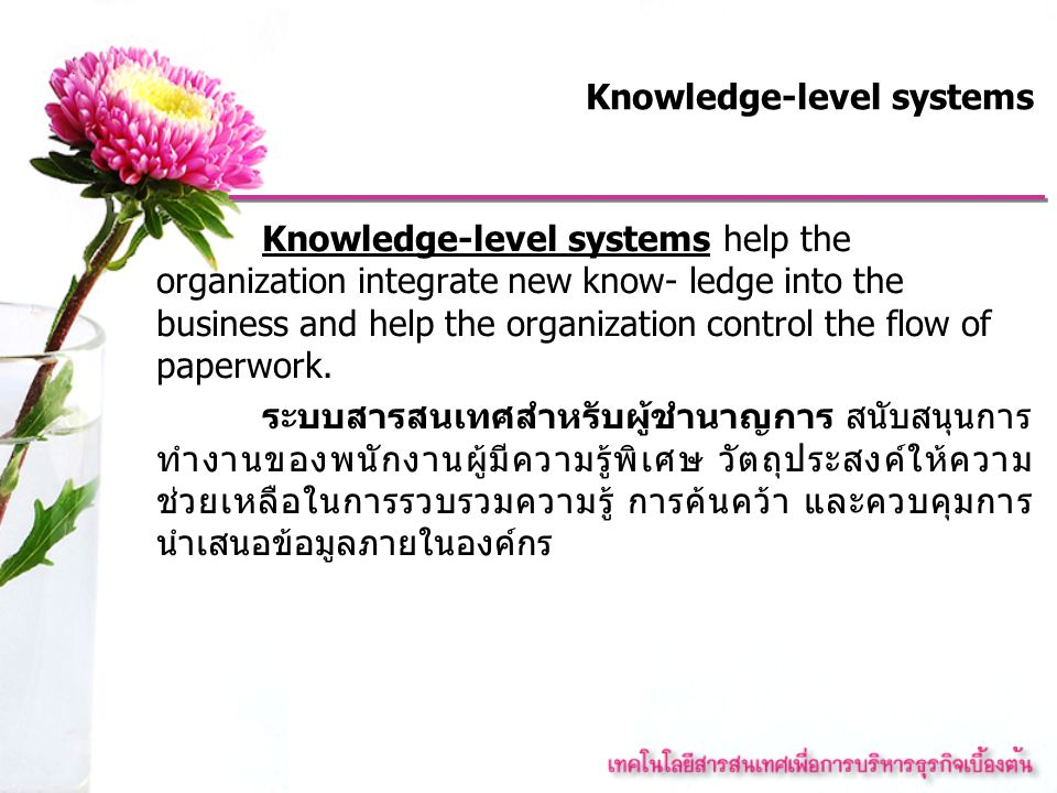 Management-level systems Management-level systems are designed to serve the monitoring, controlling, decision- making, and administrative activities of middle managers.