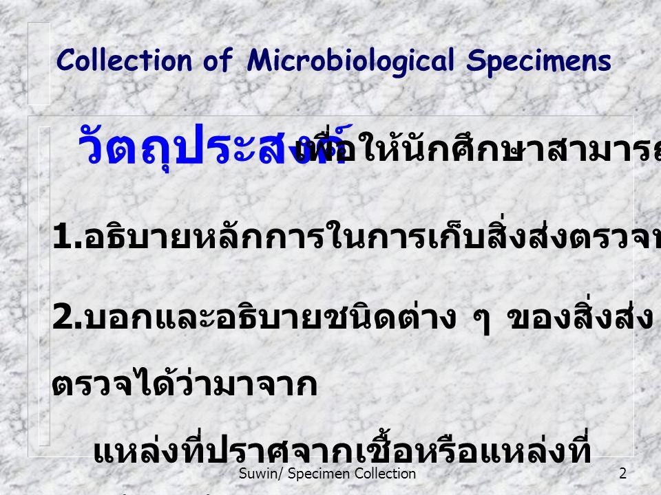 Suwin/ Specimen Collection2 2.