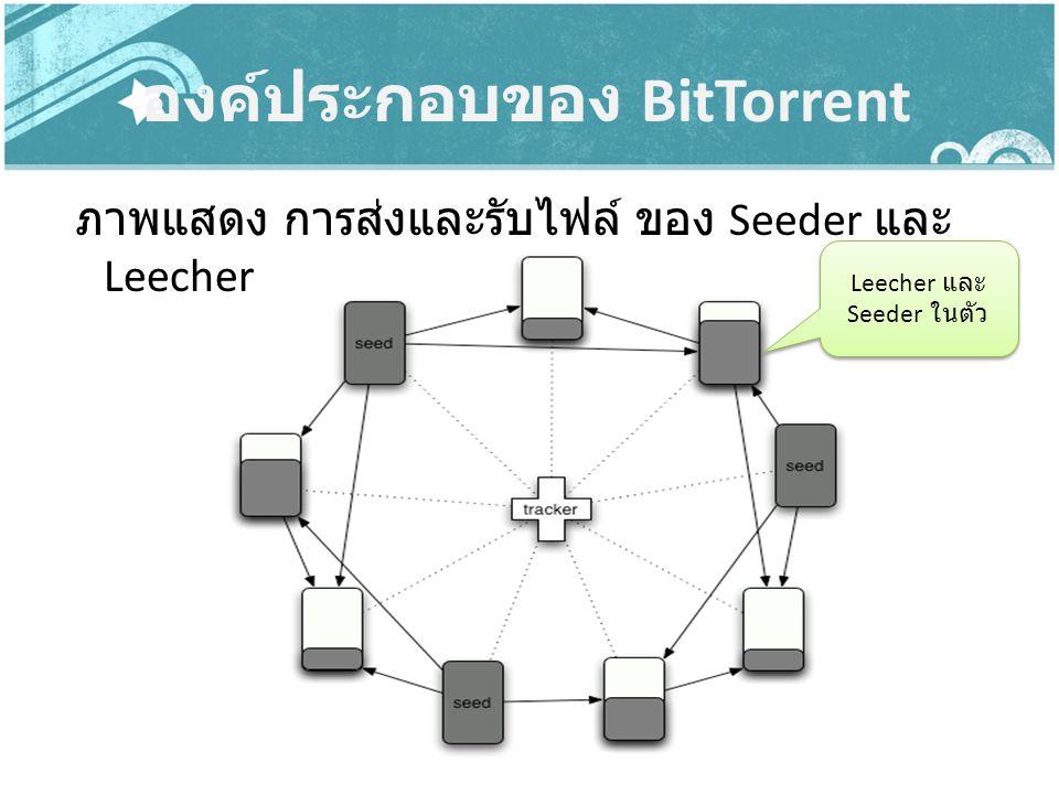 องค์ประกอบของ BitTorrent ภาพแสดง การส่งและรับไฟล์ ของ Seeder และ Leecher Leecher และ Seeder ในตัว