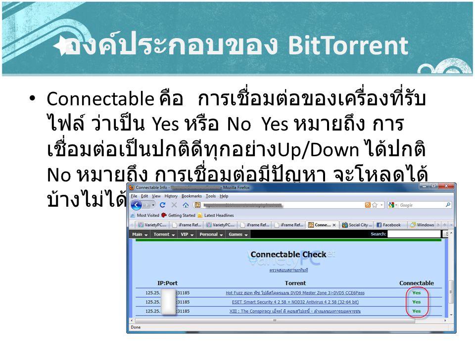 องค์ประกอบของ BitTorrent Connectable คือ การเชื่อมต่อของเครื่องที่รับ ไฟล์ ว่าเป็น Yes หรือ No Yes หมายถึง การ เชื่อมต่อเป็นปกติดีทุกอย่าง Up/Down ได้