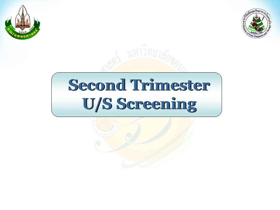 Second Trimester U/S Screening