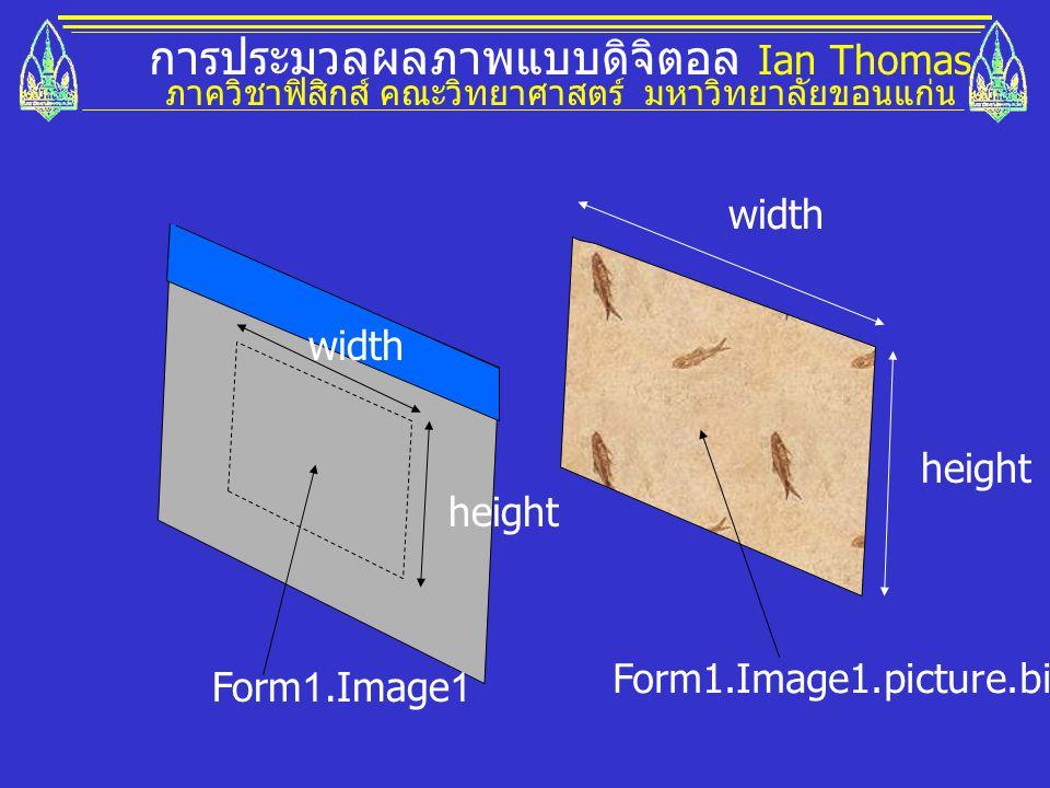 การประมวลผลภาพแบบดิจิตอล Ian Thomas ภาควิชาฟิสิกส์ คณะวิทยาศาสตร์ มหาวิทยาลัยขอนแก่น Form1.Image1.picture.bitmap Form1.Image1 width height
