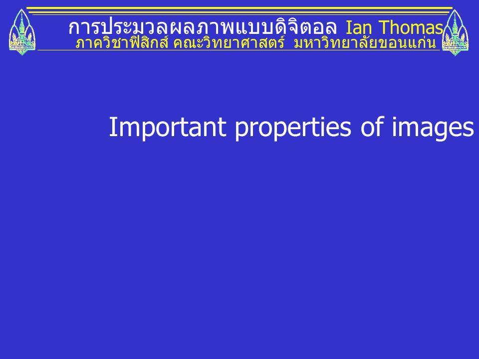 การประมวลผลภาพแบบดิจิตอล Ian Thomas ภาควิชาฟิสิกส์ คณะวิทยาศาสตร์ มหาวิทยาลัยขอนแก่น Important properties of images