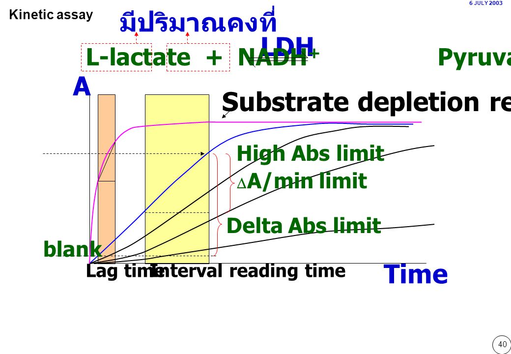 40 Lag timeInterval reading time 6 JULY 2003 Kinetic assay Time A LDH L-lactate + NADH + Pyruvate + NADH Substrate depletion reaction มีปริมาณคงที่ Hi