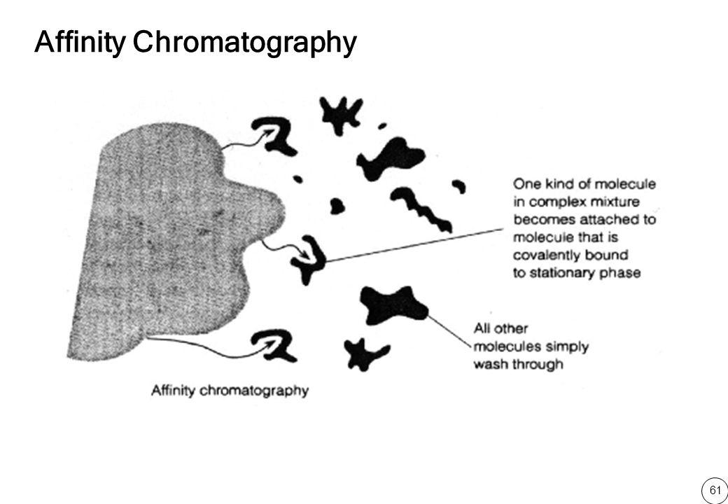 61 Affinity Chromatography