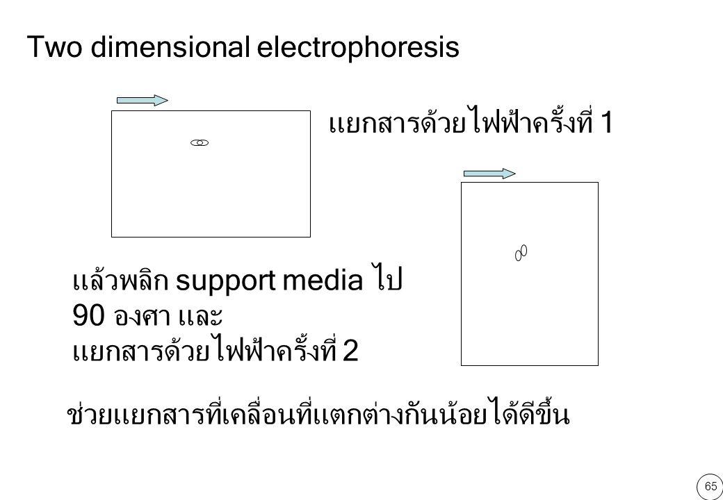 65 Two dimensional electrophoresis แยกสารด้วยไฟฟ้าครั้งที่ 1 แล้วพลิก support media ไป 90 องศา และ แยกสารด้วยไฟฟ้าครั้งที่ 2 ช่วยแยกสารที่เคลื่อนที่แตกต่างกันน้อยได้ดีขึ้น