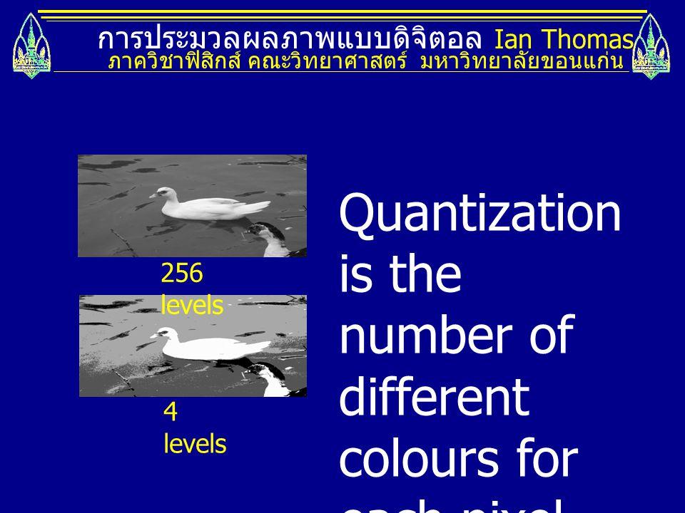 การประมวลผลภาพแบบดิจิตอล Ian Thomas ภาควิชาฟิสิกส์ คณะวิทยาศาสตร์ มหาวิทยาลัยขอนแก่น 256 levels 4 levels Quantization is the number of different colours for each pixel.