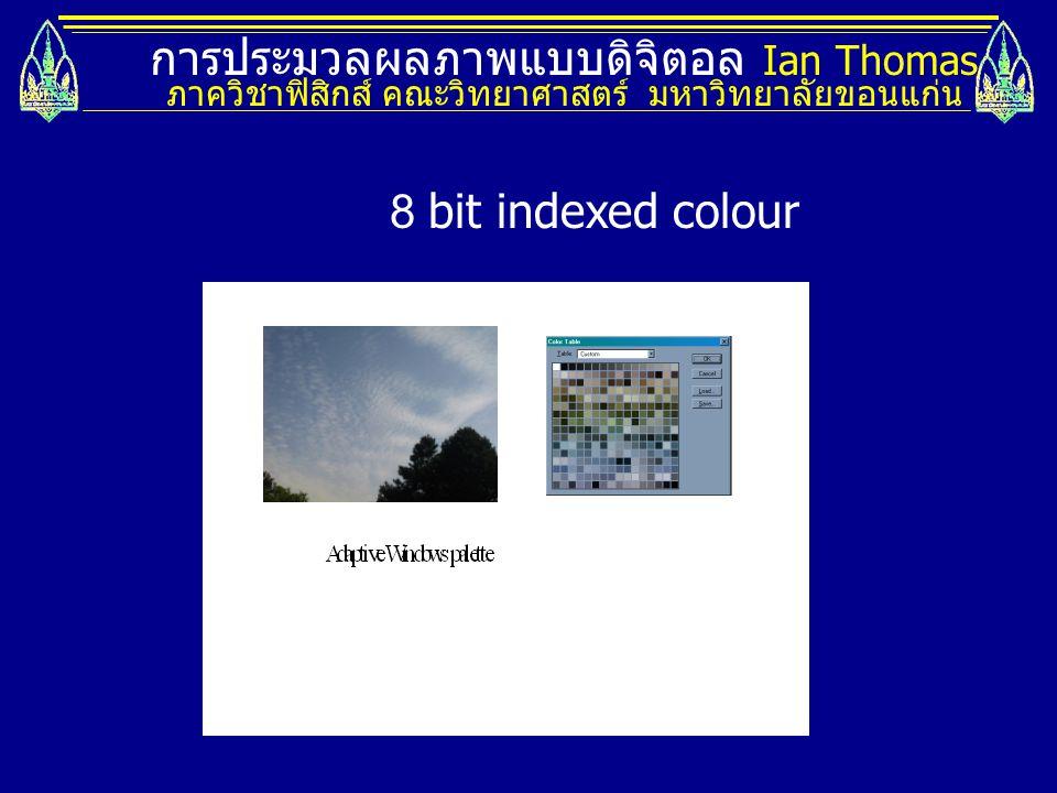 การประมวลผลภาพแบบดิจิตอล Ian Thomas ภาควิชาฟิสิกส์ คณะวิทยาศาสตร์ มหาวิทยาลัยขอนแก่น 8 bit indexed colour