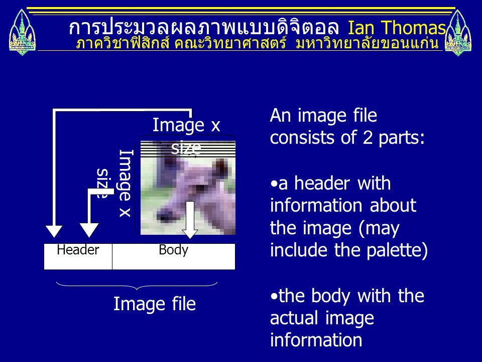 การประมวลผลภาพแบบดิจิตอล Ian Thomas ภาควิชาฟิสิกส์ คณะวิทยาศาสตร์ มหาวิทยาลัยขอนแก่น HeaderBody Image x size An image file consists of 2 parts: a header with information about the image (may include the palette) the body with the actual image information Image file