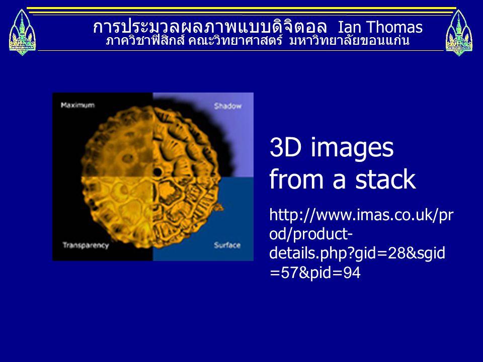 การประมวลผลภาพแบบดิจิตอล Ian Thomas ภาควิชาฟิสิกส์ คณะวิทยาศาสตร์ มหาวิทยาลัยขอนแก่น 3D images from a stack http://www.imas.co.uk/pr od/product- detai