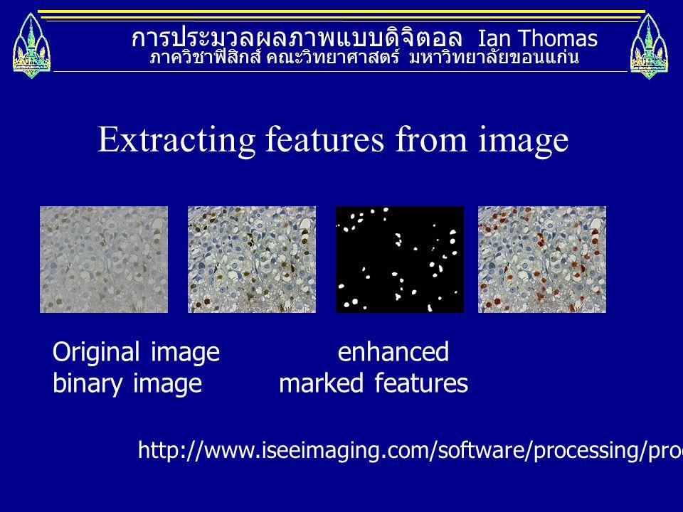 การประมวลผลภาพแบบดิจิตอล Ian Thomas ภาควิชาฟิสิกส์ คณะวิทยาศาสตร์ มหาวิทยาลัยขอนแก่น Original image enhanced binary image marked features Extracting f