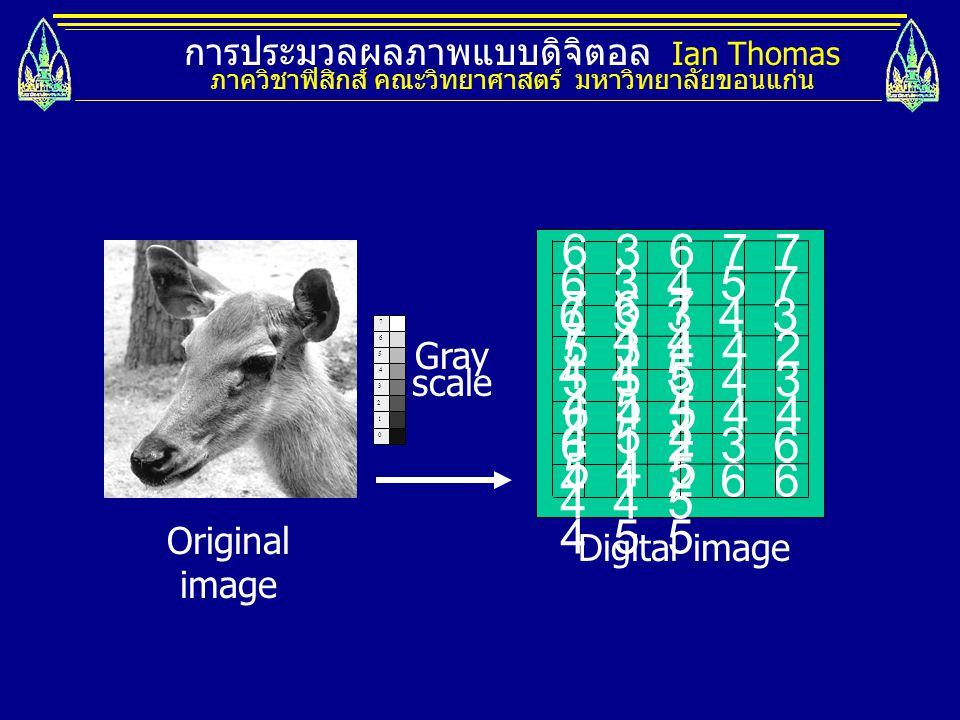 การประมวลผลภาพแบบดิจิตอล Ian Thomas ภาควิชาฟิสิกส์ คณะวิทยาศาสตร์ มหาวิทยาลัยขอนแก่น 0 1 2 3 7 4 5 6 4 1 2 6 6 4 5 5 6 3 6 7 7 7 6 7 6 3 4 5 7 7 4 4 6