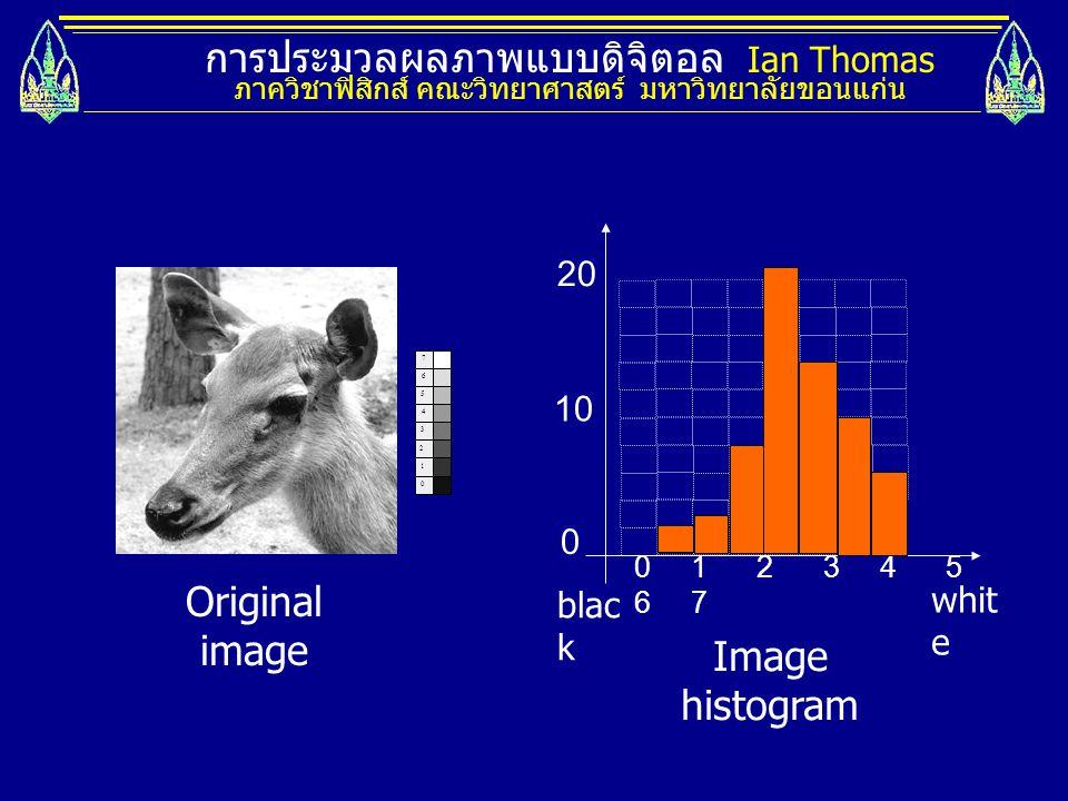 การประมวลผลภาพแบบดิจิตอล Ian Thomas ภาควิชาฟิสิกส์ คณะวิทยาศาสตร์ มหาวิทยาลัยขอนแก่น 0 1 2 3 7 4 5 6 0 1 2 3 4 5 6 7 whit e blac k 10 20 0 Original im