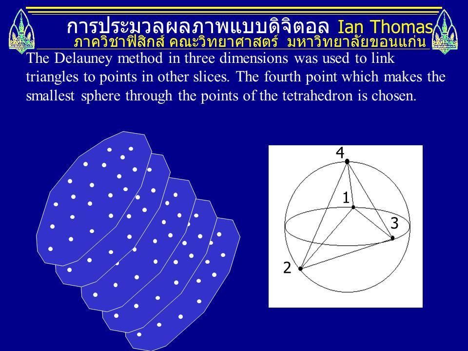 การประมวลผลภาพแบบดิจิตอล Ian Thomas ภาควิชาฟิสิกส์ คณะวิทยาศาสตร์ มหาวิทยาลัยขอนแก่น 1 2 3 4 The Delauney method in three dimensions was used to link