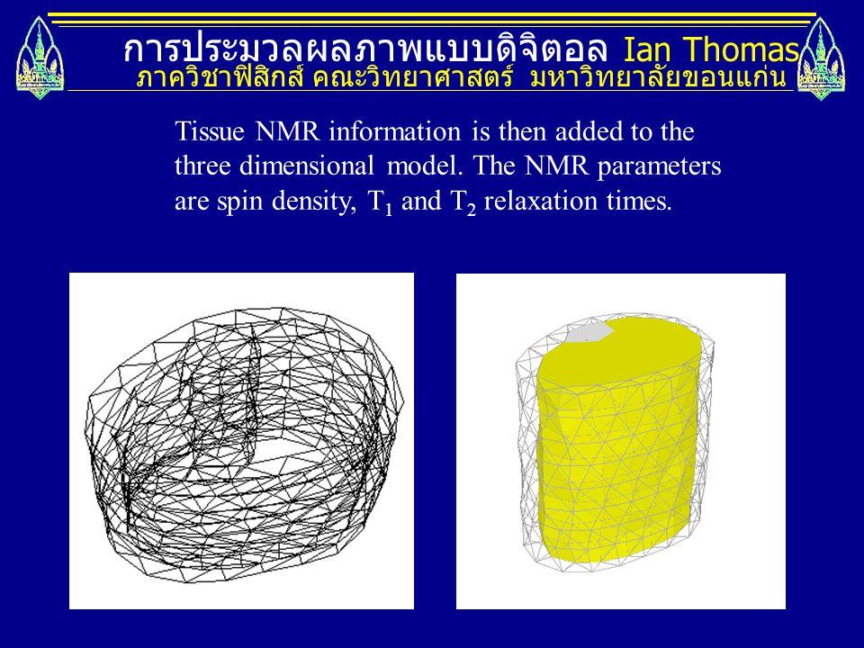 การประมวลผลภาพแบบดิจิตอล Ian Thomas ภาควิชาฟิสิกส์ คณะวิทยาศาสตร์ มหาวิทยาลัยขอนแก่น Tissue NMR information is then added to the three dimensional mod