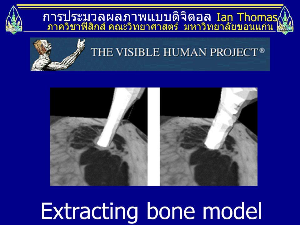 การประมวลผลภาพแบบดิจิตอล Ian Thomas ภาควิชาฟิสิกส์ คณะวิทยาศาสตร์ มหาวิทยาลัยขอนแก่น Extracting bone model from 3D dataset