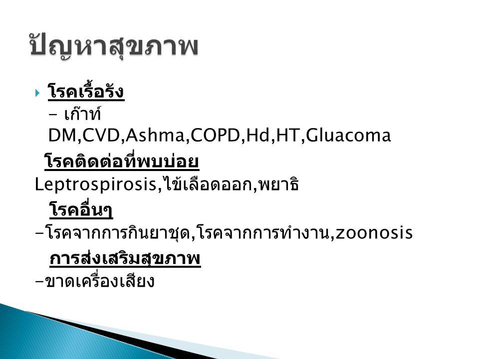  โรคเรื้อรัง - เก๊าท์ DM,CVD,Ashma,COPD,Hd,HT,Gluacoma โรคติดต่อที่พบบ่อย Leptrospirosis, ไข้เลือดออก, พยาธิ โรคอื่นๆ - โรคจากการกินยาชุด, โรคจากการท