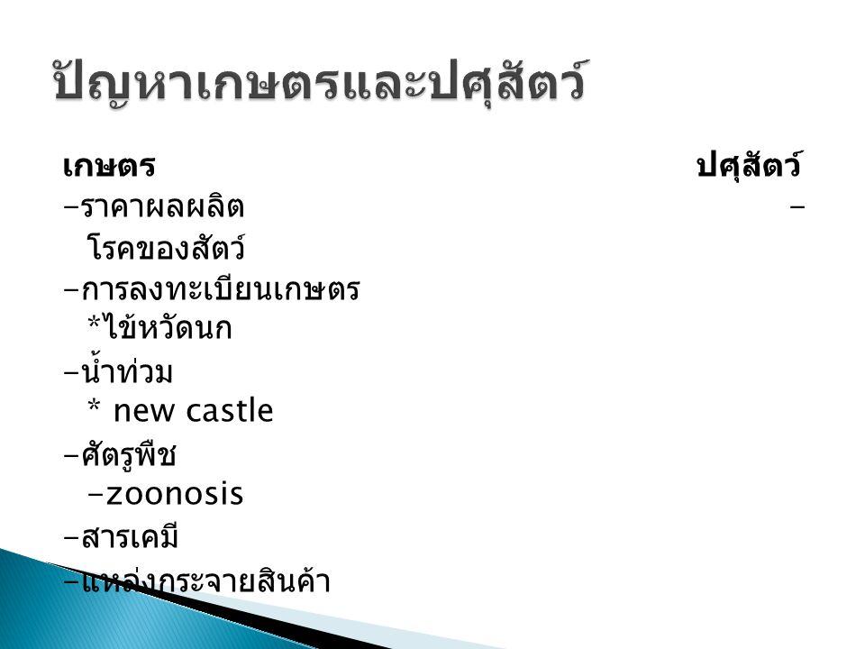 เกษตร ปศุสัตว์ - ราคาผลผลิต - โรคของสัตว์ - การลงทะเบียนเกษตร * ไข้หวัดนก - น้ำท่วม * new castle - ศัตรูพืช -zoonosis - สารเคมี - แหล่งกระจายสินค้า