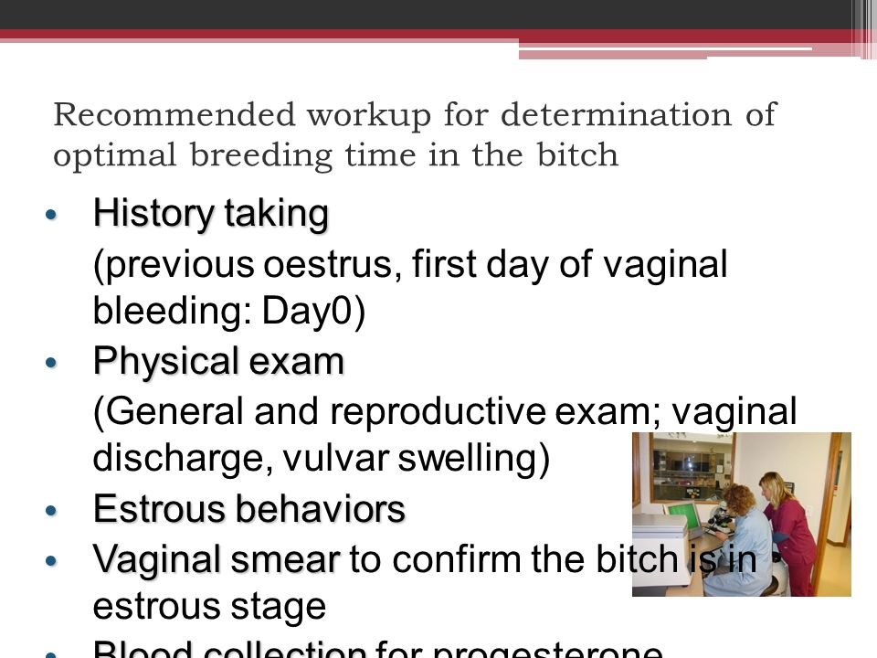 Recommended workup for determination of optimal breeding time in the bitch History taking History taking (previous oestrus, first day of vaginal bleed