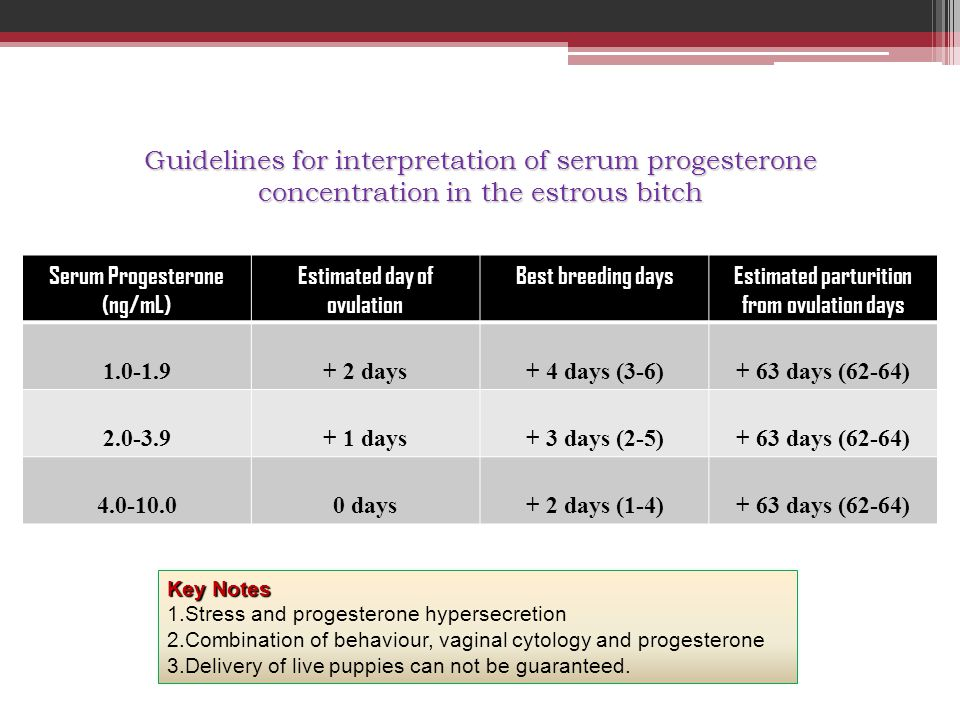Guidelines for interpretation of serum progesterone concentration in the estrous bitch Serum Progesterone (ng/mL) Estimated day of ovulation Best bree