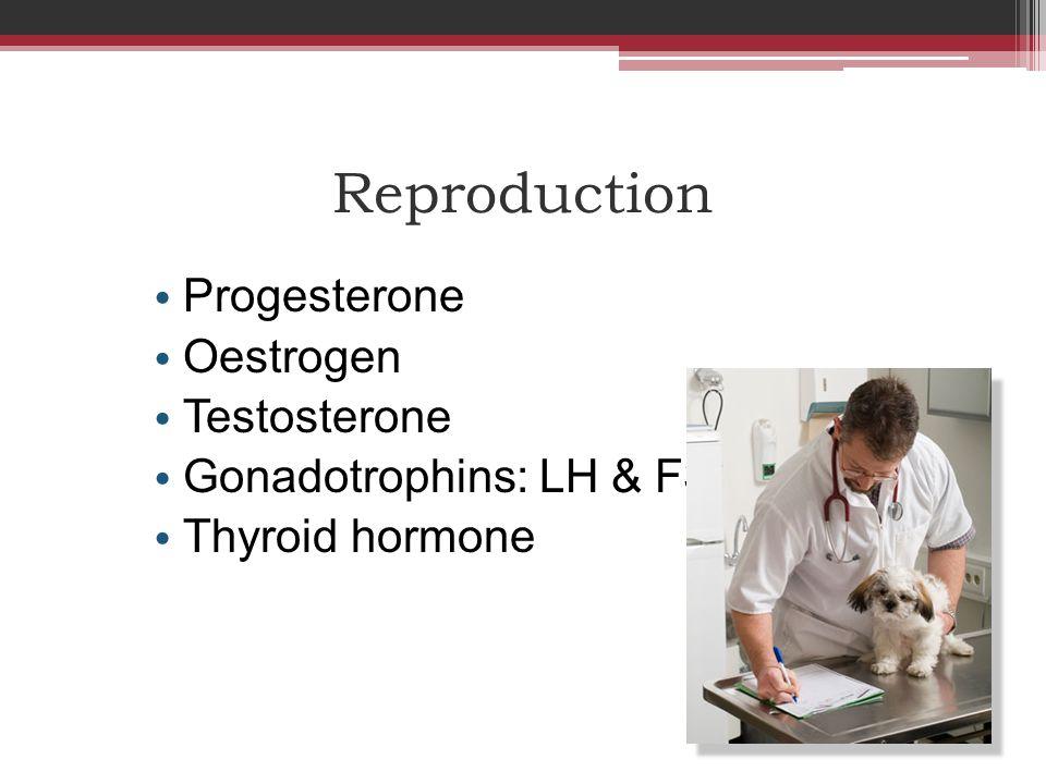Progesterone Definitions 1.