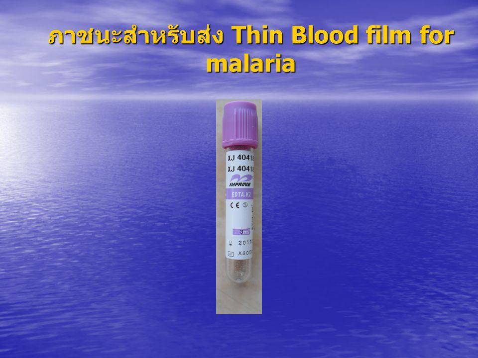 ภาชนะสำหรับส่ง Thin Blood film for malaria