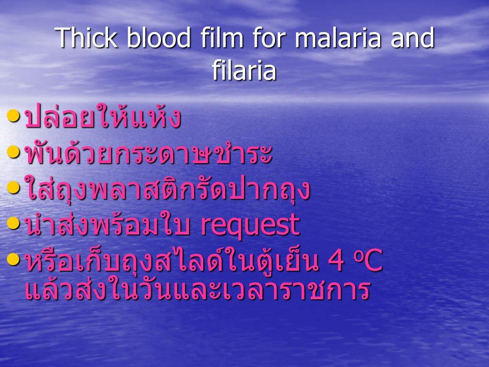 Thick blood film for malaria and filaria ปล่อยให้แห้ง ปล่อยให้แห้ง พันด้วยกระดาษชำระ พันด้วยกระดาษชำระ ใส่ถุงพลาสติกรัดปากถุง ใส่ถุงพลาสติกรัดปากถุง น