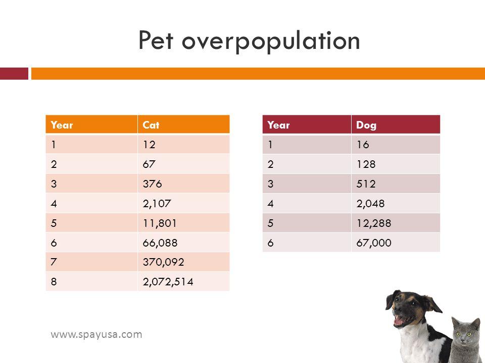 Pet overpopulation YearDog 116 2128 3512 42,048 512,288 667,000 YearCat 112 267 3376 42,107 511,801 666,088 7370,092 82,072,514 www.spayusa.com